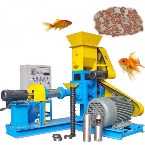 Floating Sinking Fish Food Pellet Processing Making Extruder Price Fish Feed Machine Price for Sale