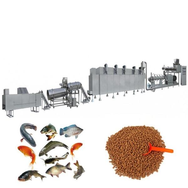 Automatic Kibble Pet Dog Cat Monkey Fox Bird Tilapia Floating Fish Feed Pellet Production Machine Snack Food Mill Processing Making Extrusion Line Price