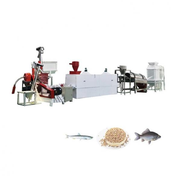 Technical Support Fish Feed Production Plant